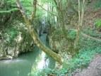 Cheile-Carasului - Parcul National Semenic Cheile Carasului2_0